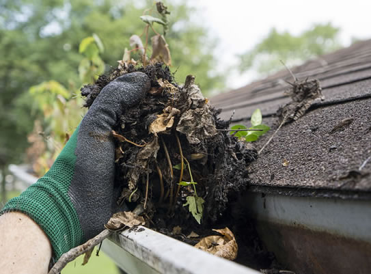 Gutter Cleaning Service Columbus Ohio