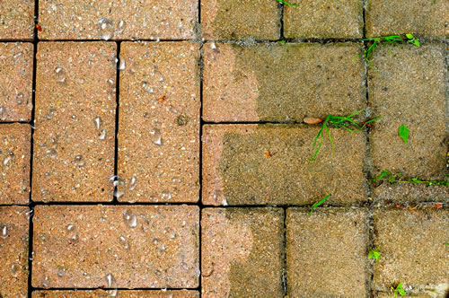 Paver, Brick, And Stone Soft Washing And Sealing Services In Columbus, Ohio.