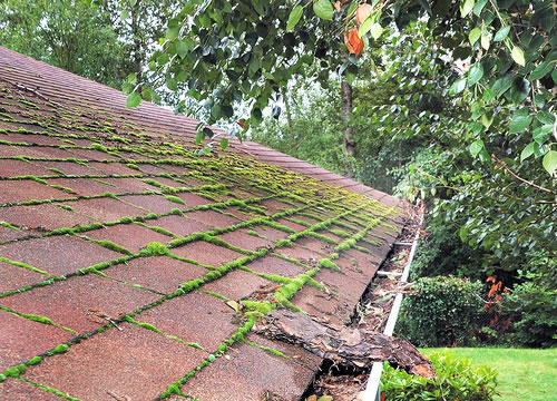 Roof Washing And Cleaning Services Columbus Ohio